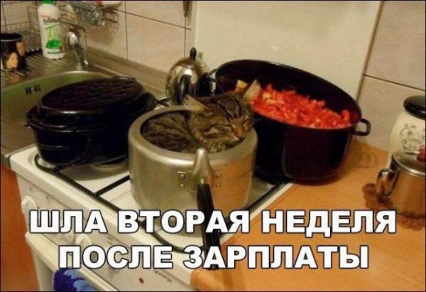 Картинки: Просто кретинки :-)