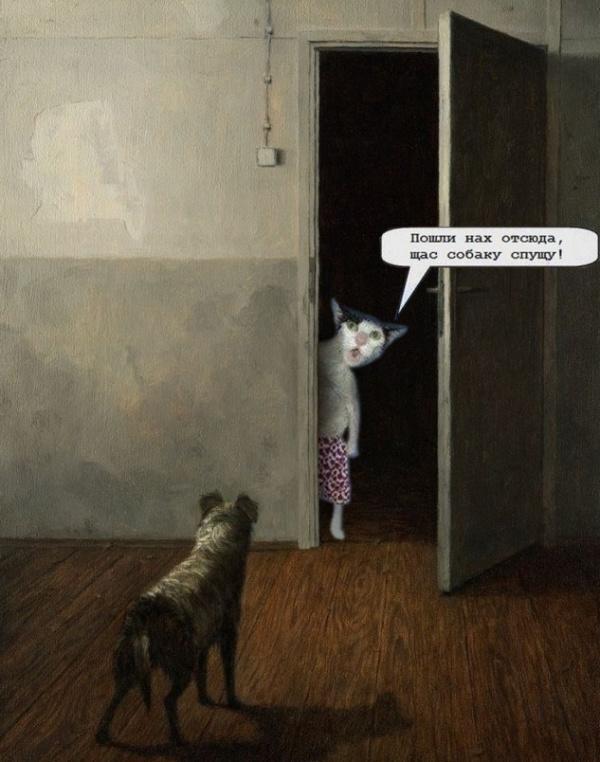 Картинки: Интересные и смешные картинки