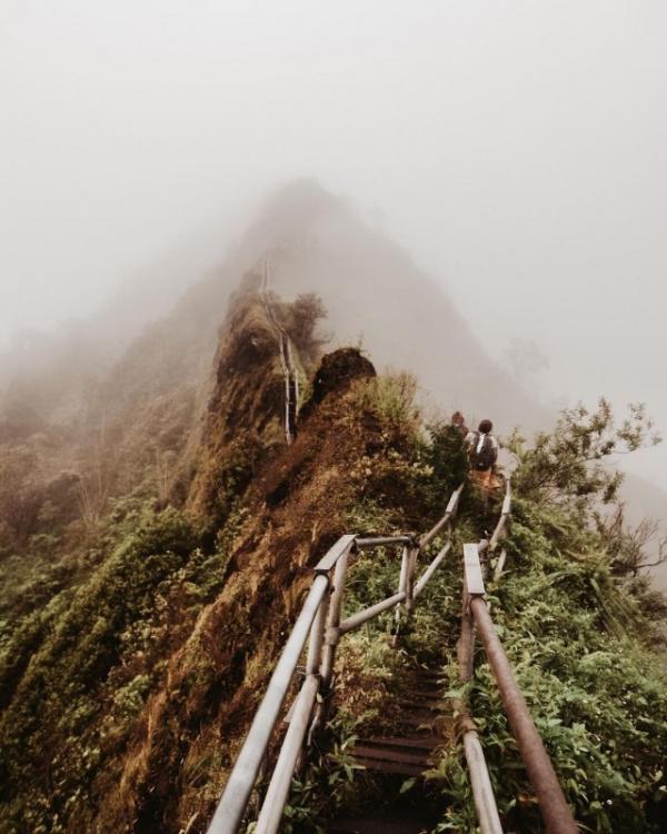 Интересное: Совет Гонолулу решил разрушить знаменитую горную тропу Лестница в небо