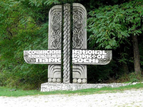 Криминал: Сотрудников Сочинского национального парка подозревают в махинациях