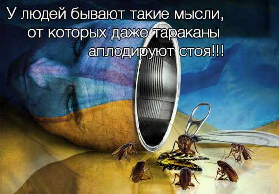 Политика: Блог Svetlana: Не нужна вам Европа