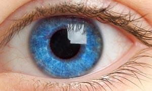 Интересное: О глазах, которые вас поразят