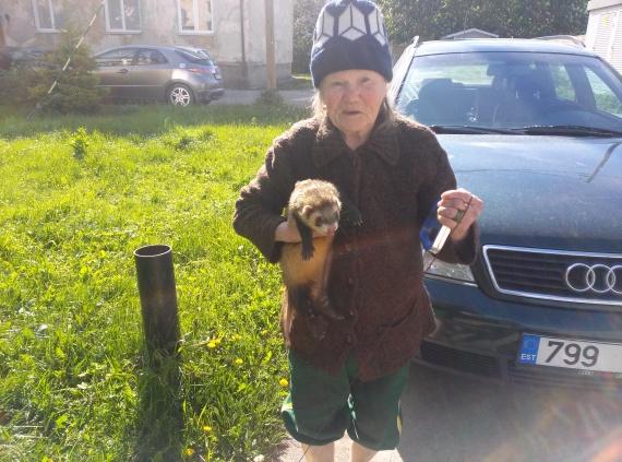 Жизнь: Суровые эстонские бабки....