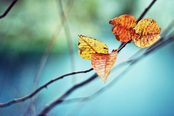 Интересное: Зввтра придет осень