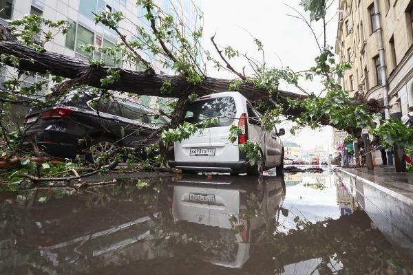 Происшествия: Ураган в Москве убил 11 человек