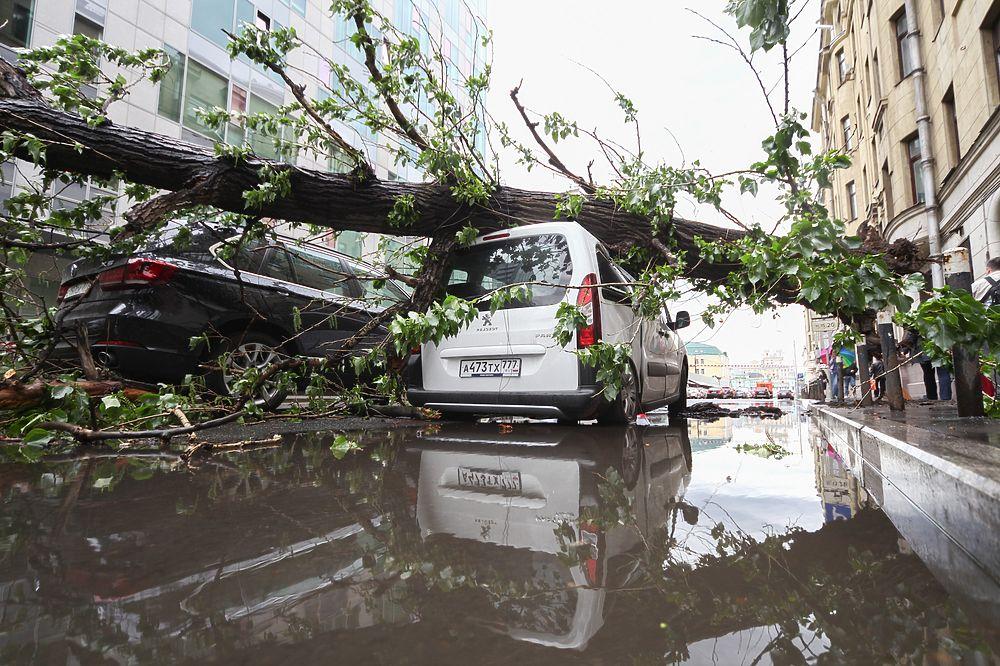 метод, позволяющий последствия урагана в москве фото попробует нарисовать вот