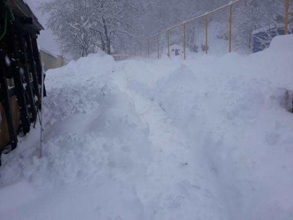 Краснодарский край: В Краснодарском крае и Адыгее за несколько дней до начала лета выпало 45 см снега