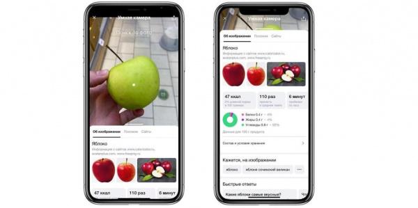 Интересное: Яндекс научил своё приложение распознавать еду и калории