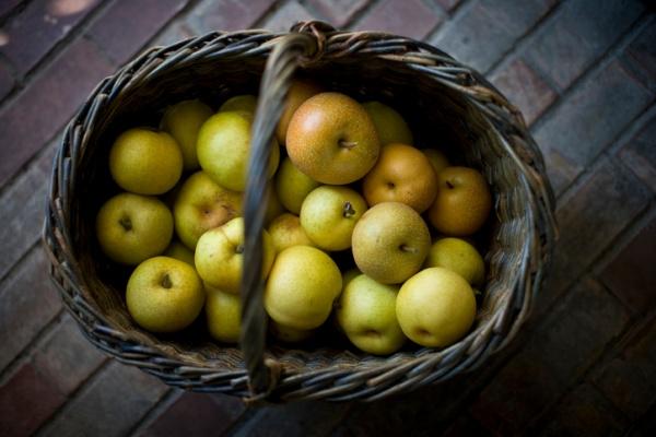 Блог kir: Что нельзя хранить в холодильнике