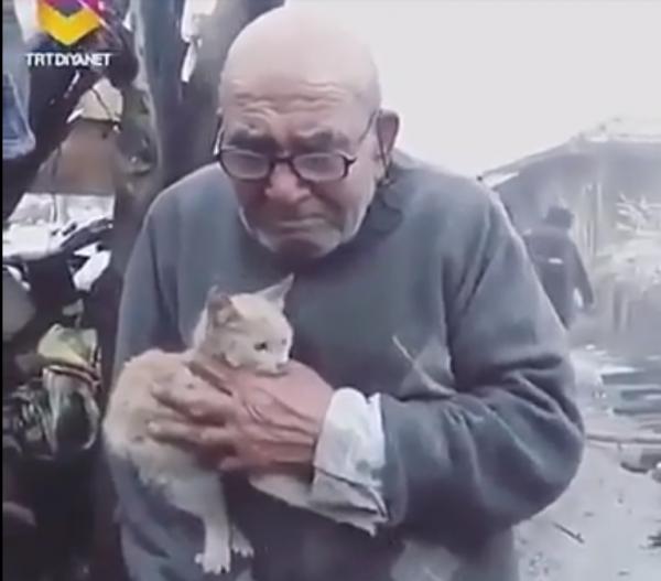 Блог kir: После пожара остался только любимый кот