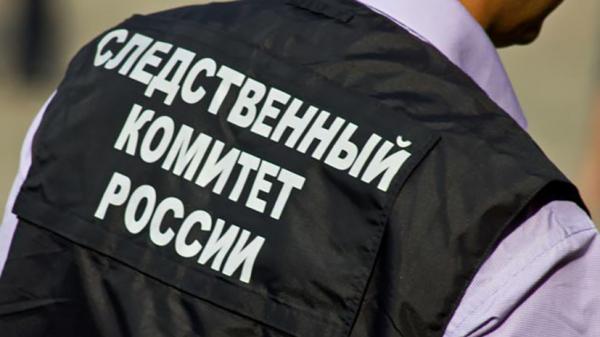Право и закон: СК России возбудил ещё три дела из-за фейков о коронавирусе