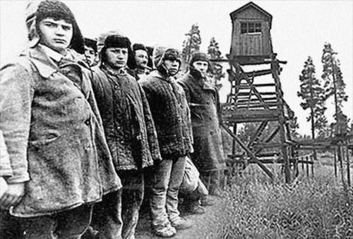 История: О сталинских репрессиях