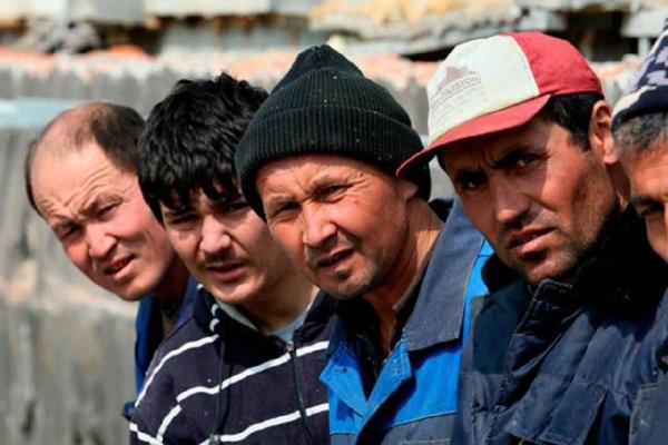Право и закон: Для трудовых мигрантов в России будут вводить *налог на работу*