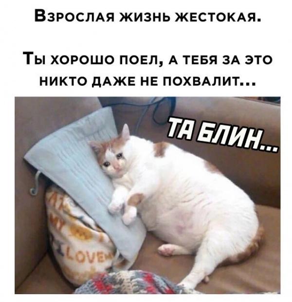 Картинки разные для разного настроения :-)