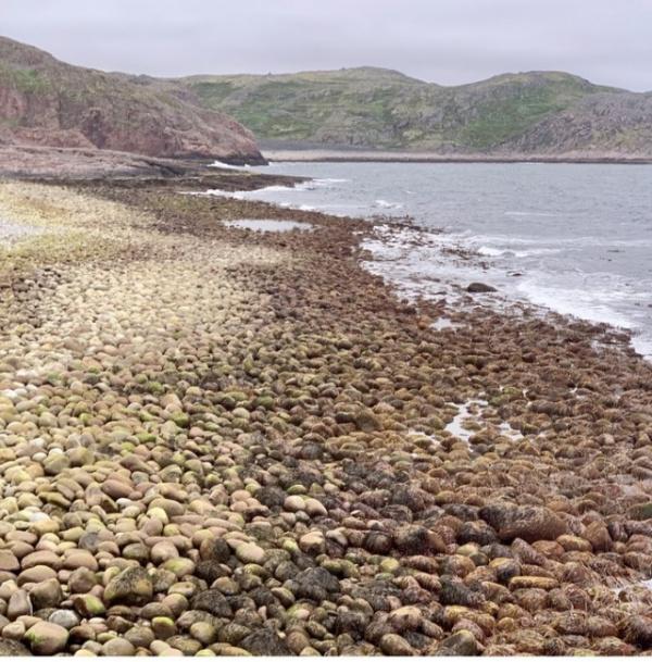 Интересное: С виду самый обыкновенный галечный пляж