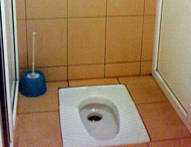 zvezdi-v-tualete